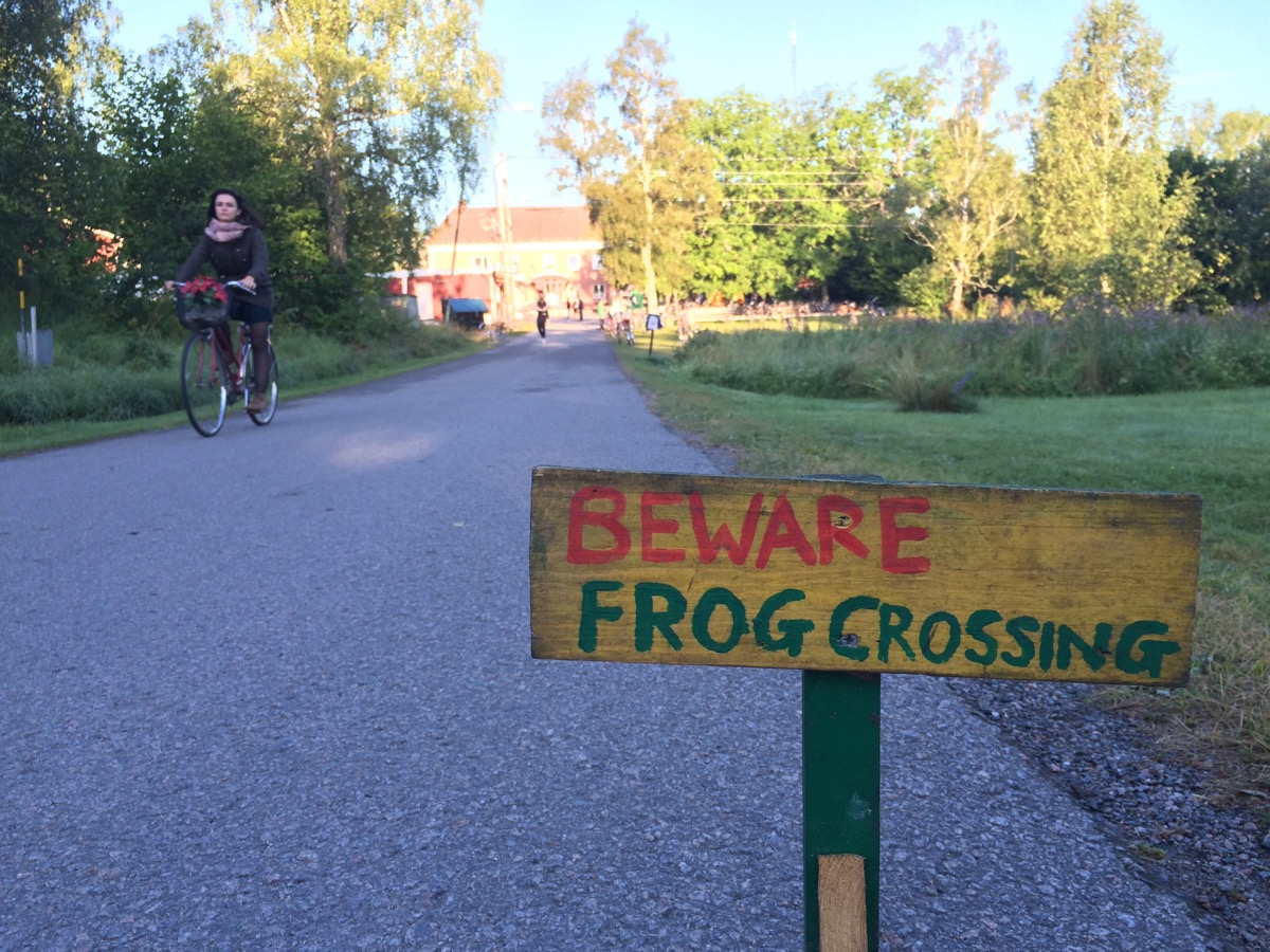 Beware frog crossing (2) copy-1200