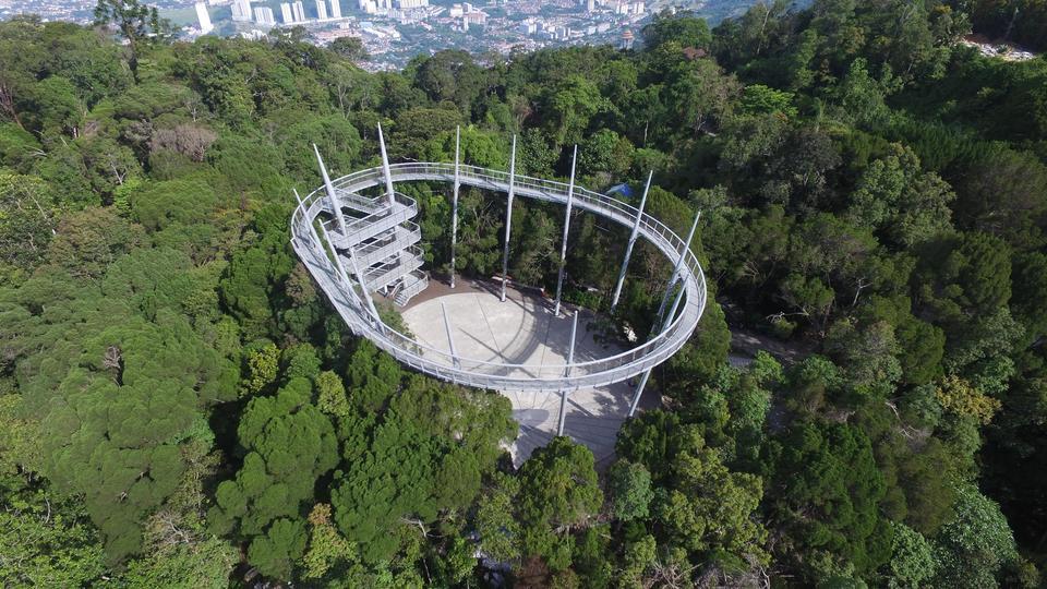 Penang rainforest