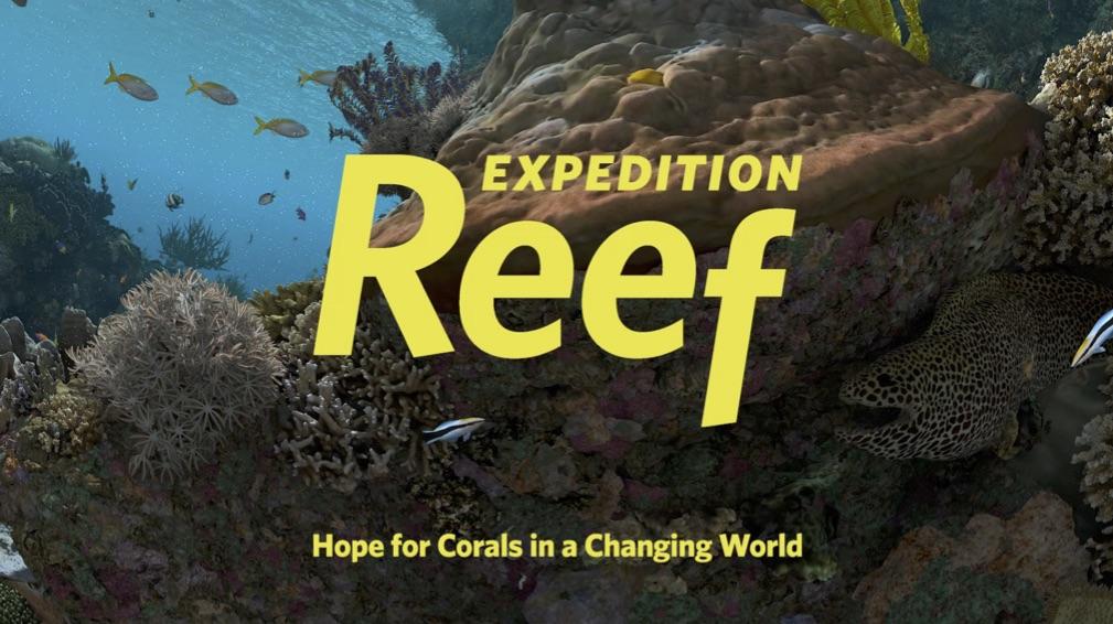 Expedition reef still