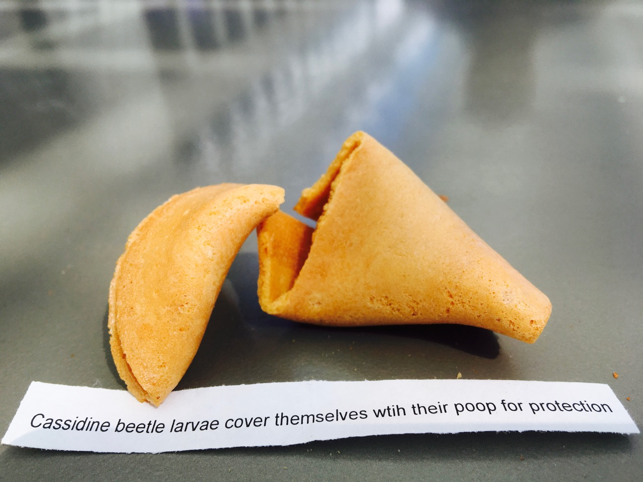 Science fortune cookie