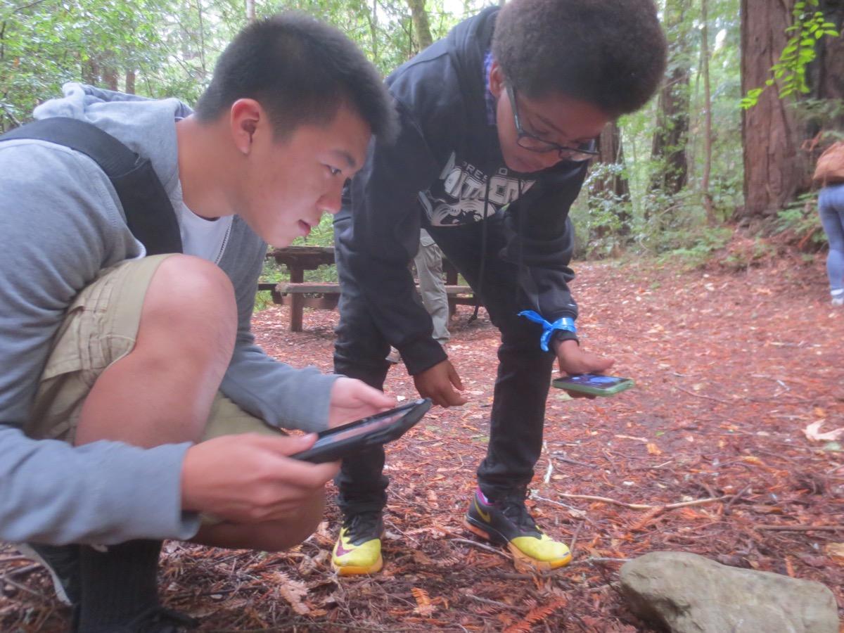 Daniel ho and lucas make observation on bioblitz copy-1200